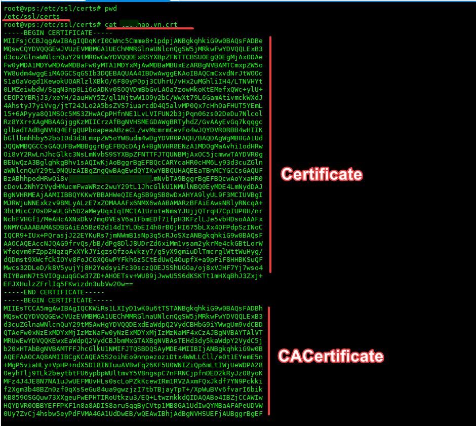 Hướng dẫn cài đặt SSL (trả phí) trên Odoo