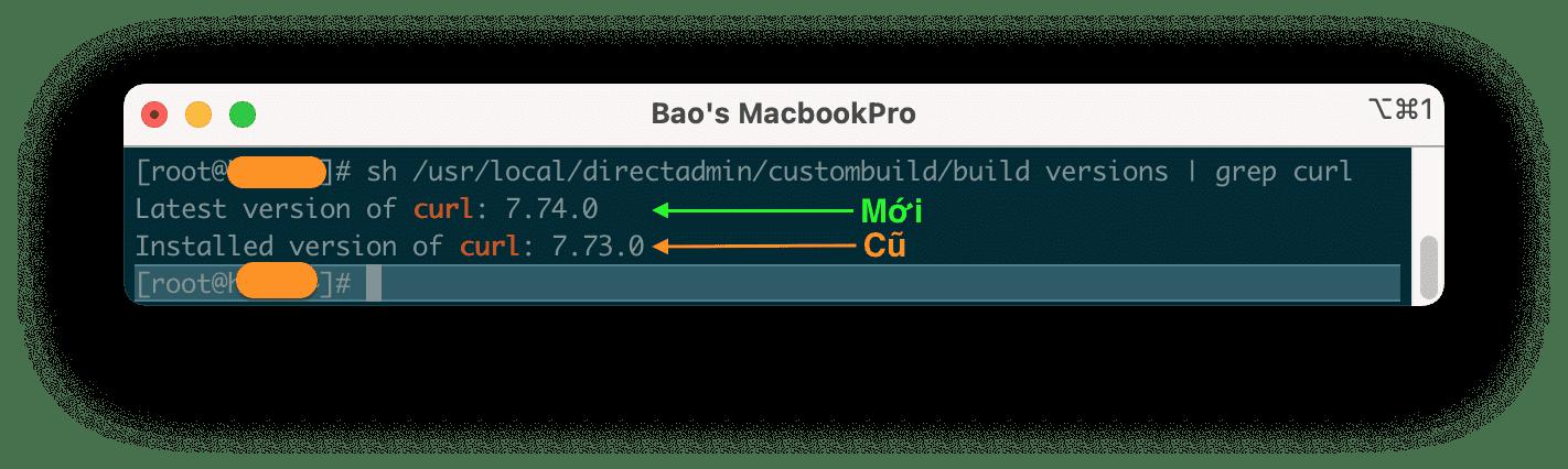 how-to-update-nang-cap-curl-tren-directadmin