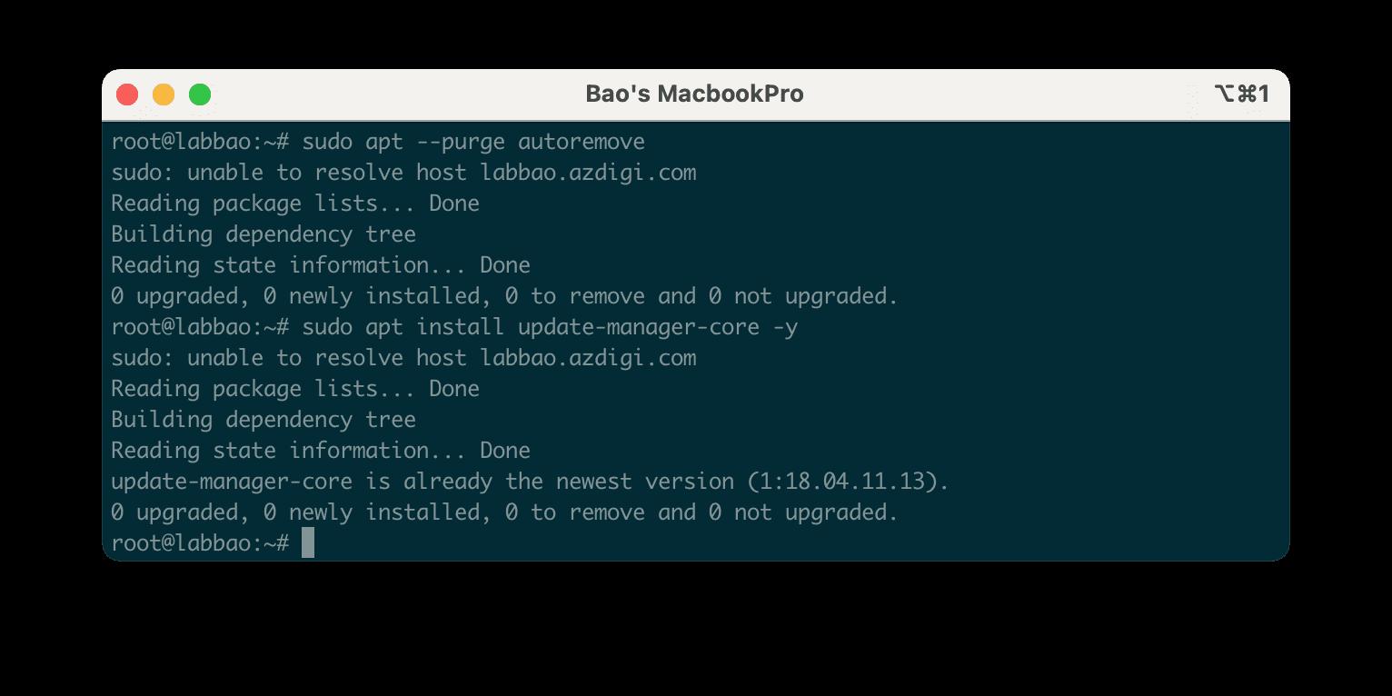 Nâng cấp Ubuntu 18.04 lên Ubuntu 20.04