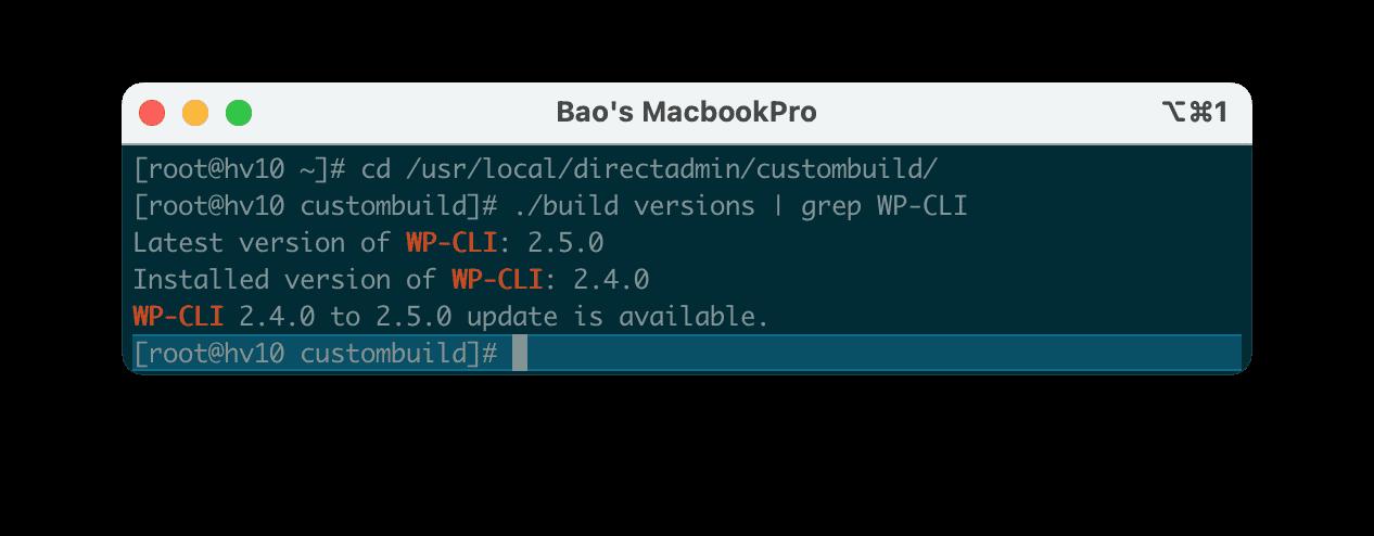 Nâng cấp phiên bản WP-CLI trên DirectAdmin | How to update WP-CLI Directadmin